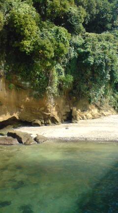 猿島でバーベキュー♪